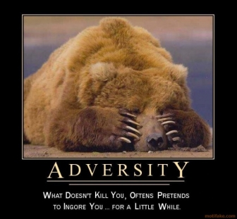 adversity-you-cant-play-hide-n-seek-with-your-fate-demotivational-poster-12446771491